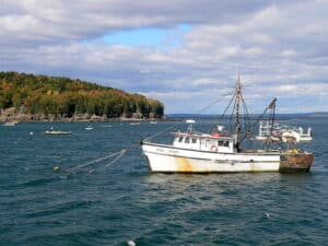 Maine Lobster Industry Threatened By New Federal Regulations