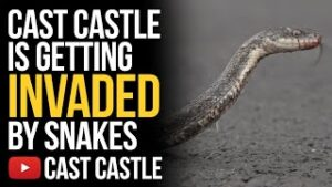 Cast Castle Is Getting Invaded By Snakes