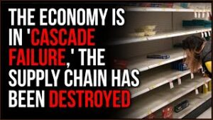 Economy Is In Economic Cascade Failure, The Chain Of Supply Is DESTROYED