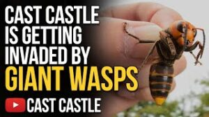 Cast Castle Is Getting Invaded By Giant Wasps